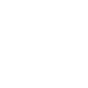 logo bluesound wit