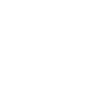 delta logo wit