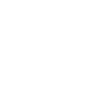 nad logo wit